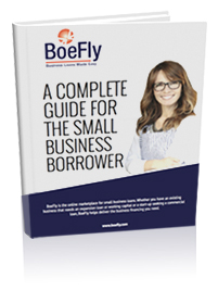 boefly_book